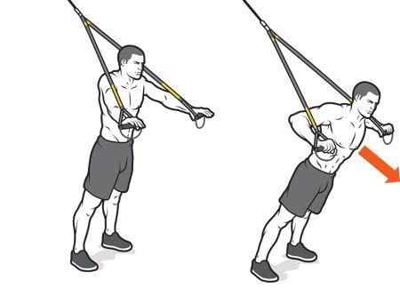 Beginner's Guide: Suspension Training