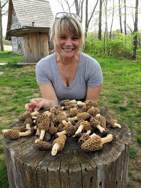 25 best mushroom hunting ideas on pinterest edible wild mushrooms wild mushrooms and edible - Wild mushrooms business ideas ...