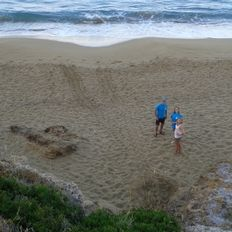 The morning survey team on Ammes beach   | check it out at http://wildlifesense.com