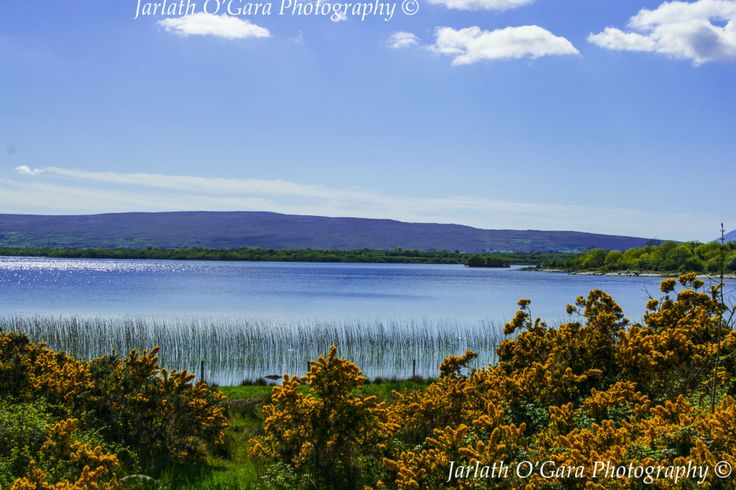 Lough Carra co Mayo