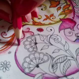 Para dar aquele efeito esfumado, estou usando o lapis aquarelavel e passando pincel pouco umido em cima da cor. Estou gostando do resultado. Quando ficar pronto posto para voces  Siga @jardimsecretocolorido e use #jardimsecretocolorido