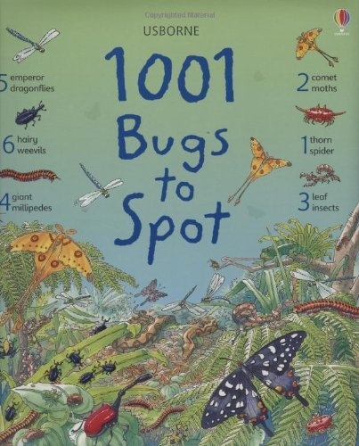 1001 bugs things to spot usborne 1001 things to spot by