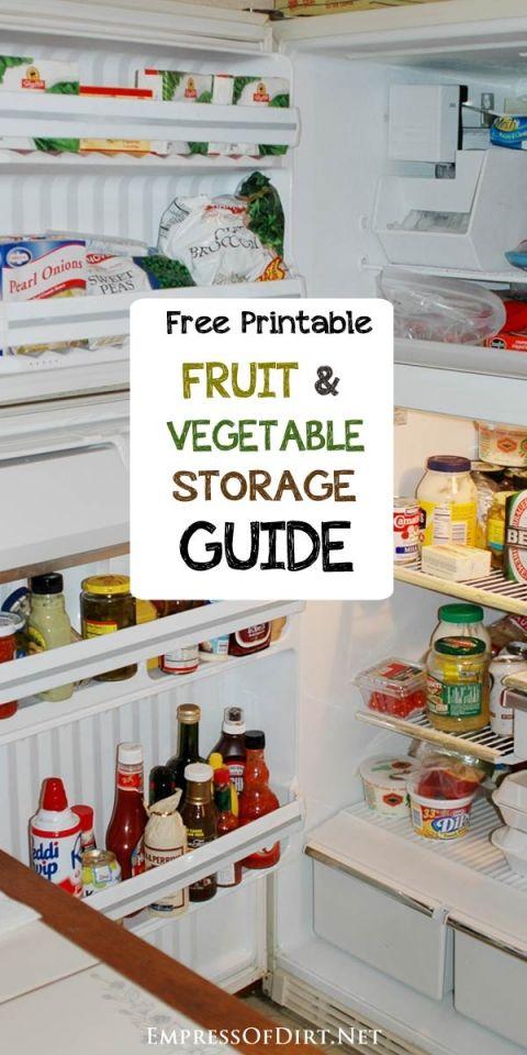 Countertop Vegetable Storage : ... Pinterest Find colleges, Fresh fruits and vegetables and Vegetables