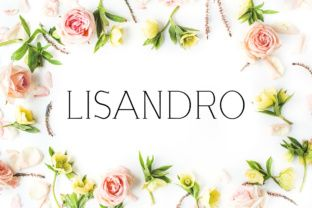 http://Lisandro, a stylish slab serif font, is good for making creative displays due to its modern conception and design. It's a lovely and unique slab serif font, allowing you to make each word look completely stylish! Add Lisandro, a thin slab serif, to your font collection today.