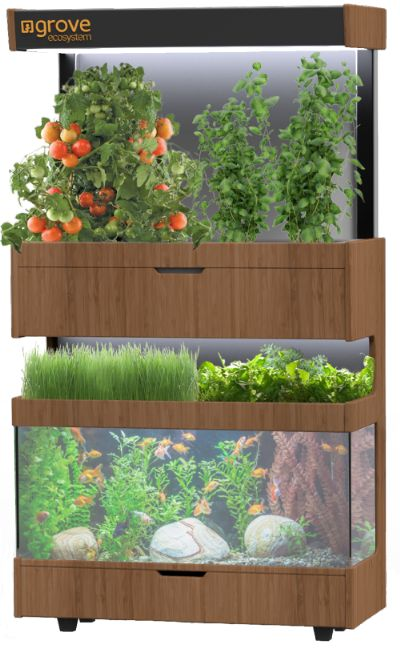 A Grove is a living ecosystem in your home where fresh food is always growing. Join the Growing Revolution!
