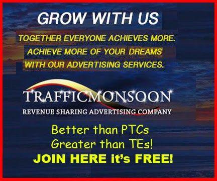 traffic monsoon free traffic