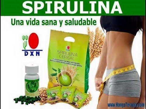 Alga Espirulina Alimento Ancestral Dxn Recupera Tu Salud Salud
