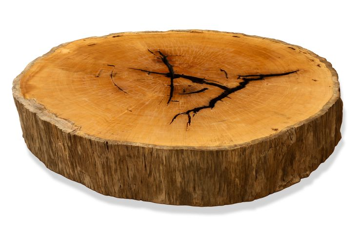Pequi Round Wood Slab Coffee Table Rotsen Coffee Tables