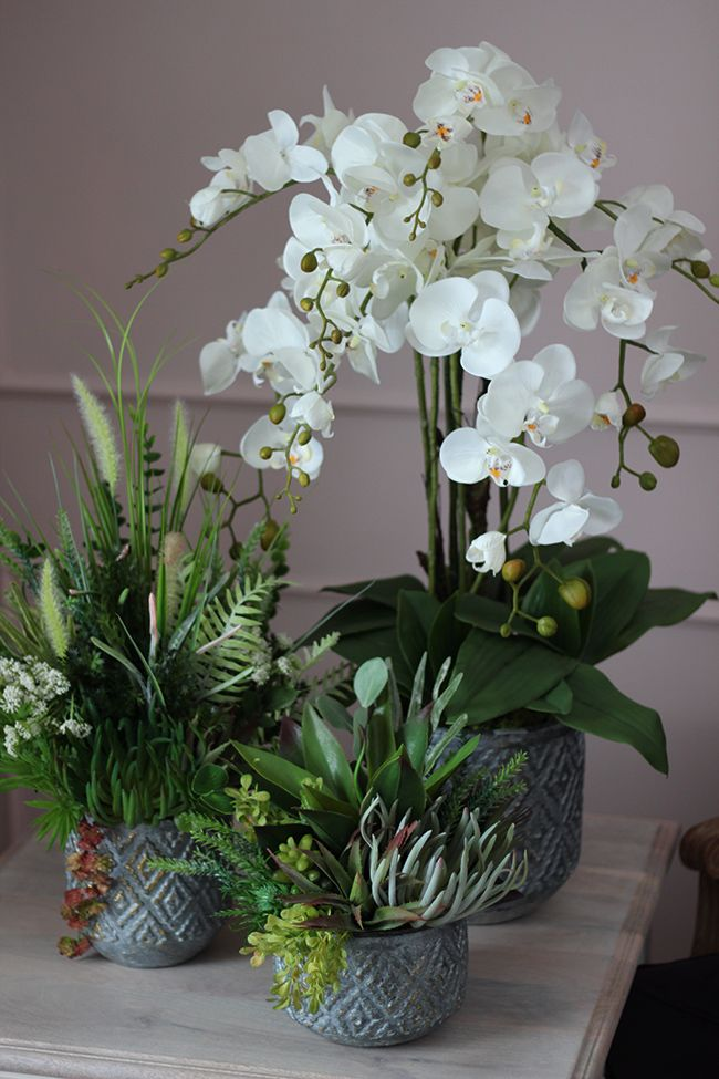 Pin By Asta On Sztuczne Kwiaty Doniczkowe Flower Pots E Flowers Flowers