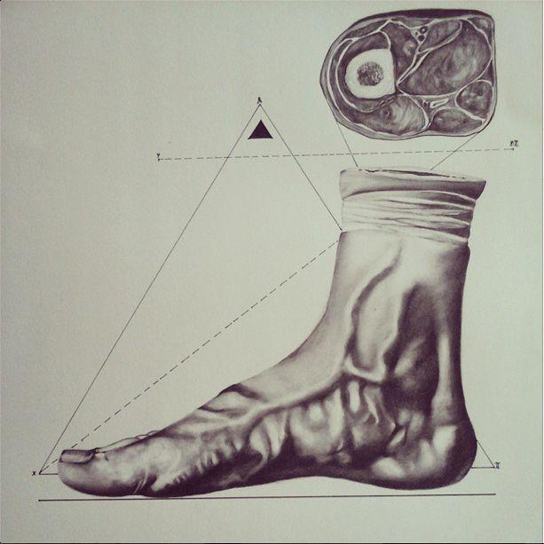 DRAWING federica poletti #sacred geometry #anatomy 35x50 2014