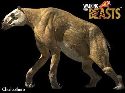 chalicotherium - Google Search
