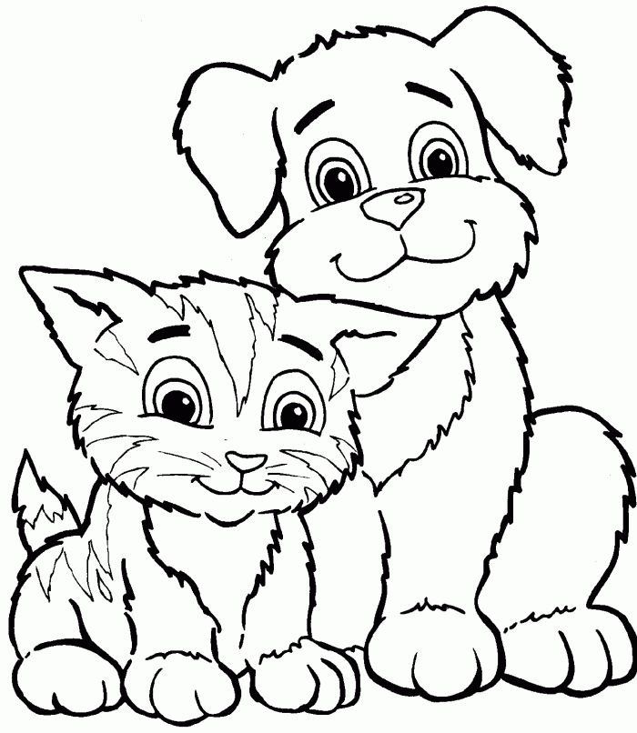 cat color pages printable coloring page for kids kitten coloring