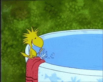 Post #: Calor. kkkkkkk delicinha banho de gato.