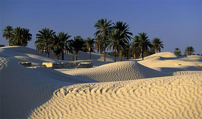 Desierto De Douz Mejores Viajes Tunez Viajes