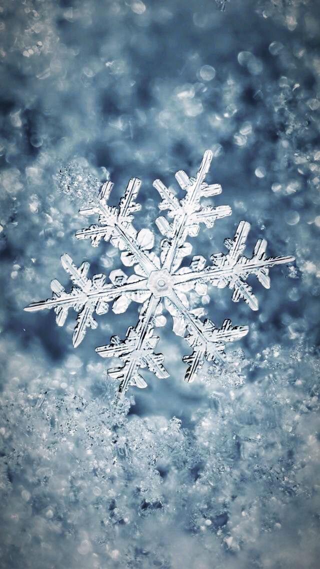 Luxury Iphone Wallpaper Wallpaper Iphone Winter Beautiful Snowflakes ️ Winter
