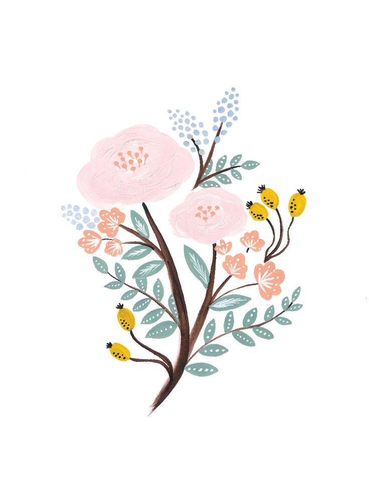 Botanical illustrations #botanical #botanics #illustration #flower #tender #design #poster #thepaperhome #art #artwork