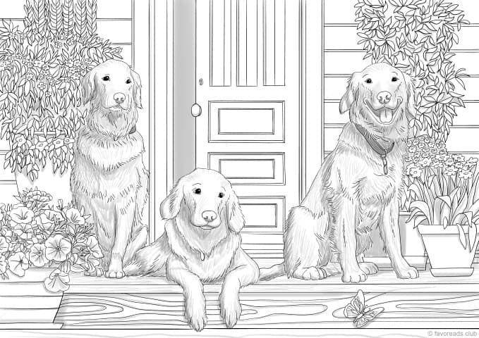 Three Friends Dibujos Para Colorear Adultos Imagenes Para