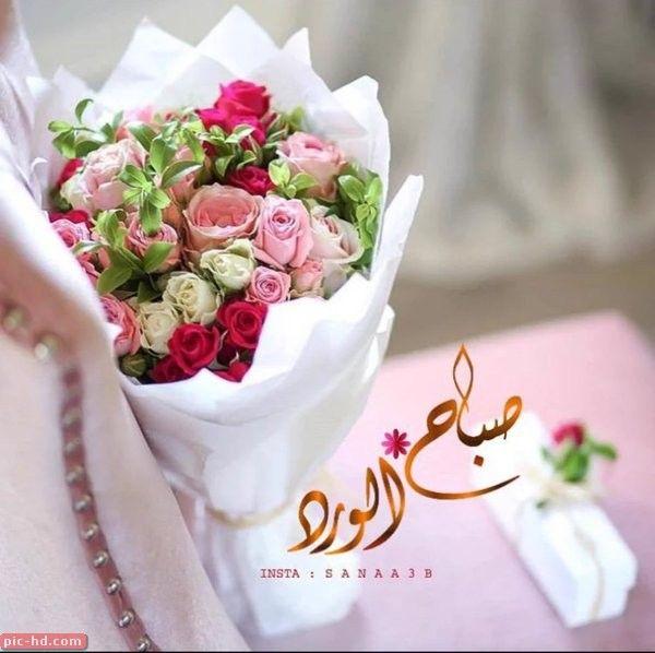 صور مكتوب عليها عبارات صباح الورد حالات صباح الخير Good Morning Greetings Good Morning Roses Good Morning Image Quotes