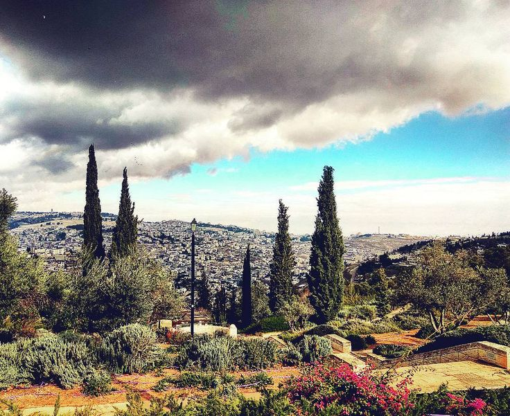 #Israel #Jerusalem #Иерусалим #Eilat #IsraelSouth #RedSea #Израиль #КрасноеМоре  #Эйлат #Hotel #Holidays #ИзраильЮг #Юг #אילת #Desert #Negev #Пустыня #Негев #freediving #diving  #Isrotel  #hotelisrael eilat-il.com |  freediving.eilat-il.com