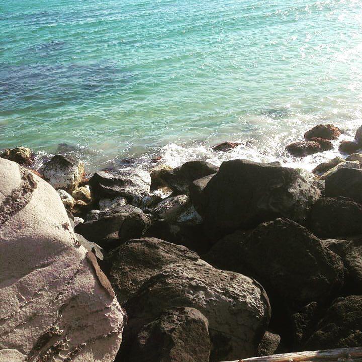 #warrnambool #warrnambool3280 #warrnamboolbeach #warrnamboolvictoriaaustralia #warrnamboolshellybeach #amazingwarrnamboolbeach #beachbluewater #bluewater #rockybeachwarrnambool #rockybeach #destinationwarrnmabool #destinationwarrnambool3280 #lovebeaches #lovewarrnambool #warrnamboolsummerfun #destinationwarrnmbool #soprettybeach #soprettywarrnambool #soprettaustralia by sezzabear80