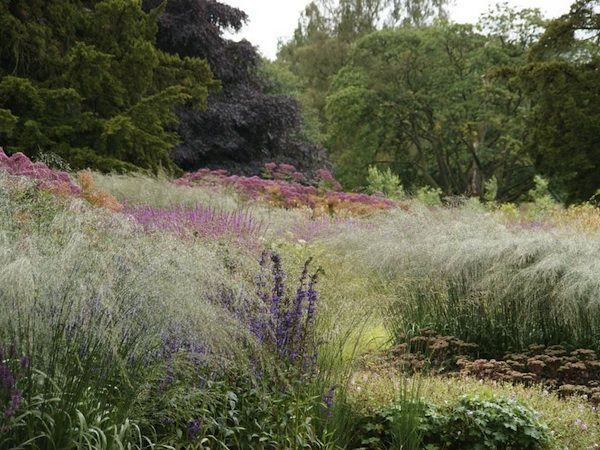 127 best images about piet oudolf on pinterest gardens for Piet oudolf pflanzplan