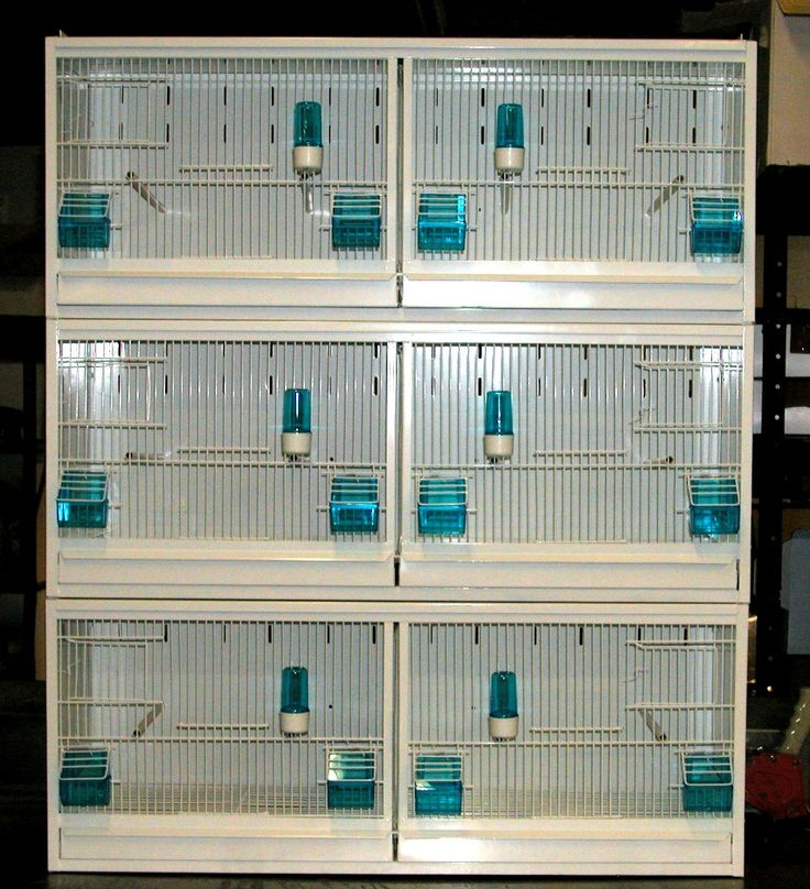 finch breeding cages for sale