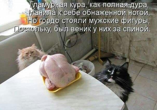Новогодние, совесть смешные картинки