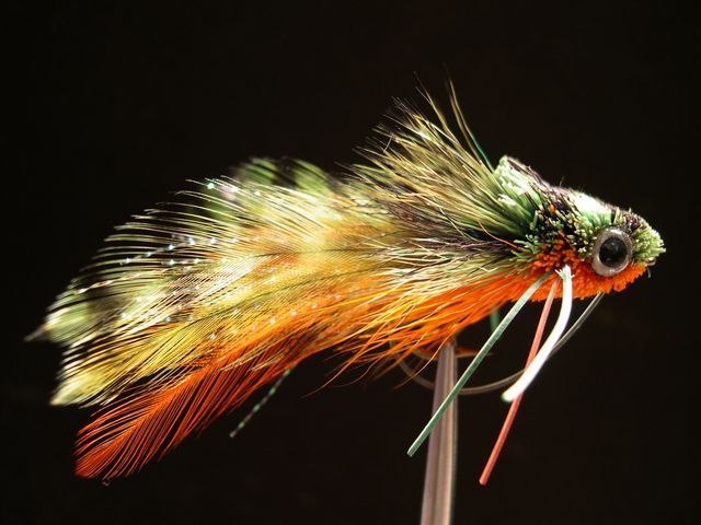 1000 images about bass flies on pinterest for Bass fly fishing