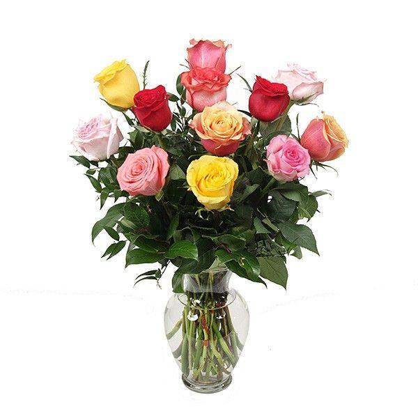 PlantShed.com | A Dozen Multicolored Roses (16'') | Flower Delivery NYC Florist