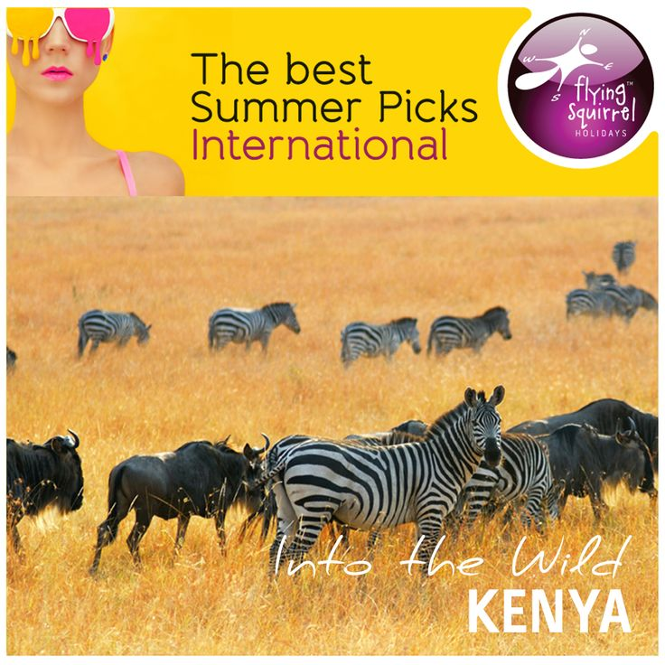 Here is your best bet for a close encounter with the Big Five. Our handpicked summer safari programme at Kenya will take you to the Amboseli National Park, Kenya, Lake Nakuru National Park, and Maasai Mara Game Reserve. To know more connect with Flying Squirrel Holidays