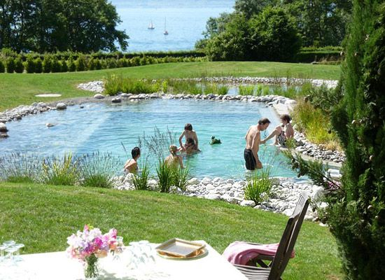 The principle of the natural swimming pool lies in the implementation of a circuit of water filtration by natural means, as the water is decanted and the overflow are the different types of plants that trap dirt and other insects, cleaned water is then returned through a pump in the main basin.