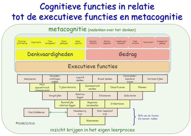 Combinatie metacognitie cognitieve functies en executieve functies StiBCO EmielvanDoorn