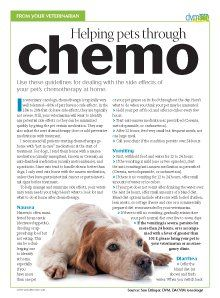 Guide veterinary clients through the chemotherapy process using this helpful tool.