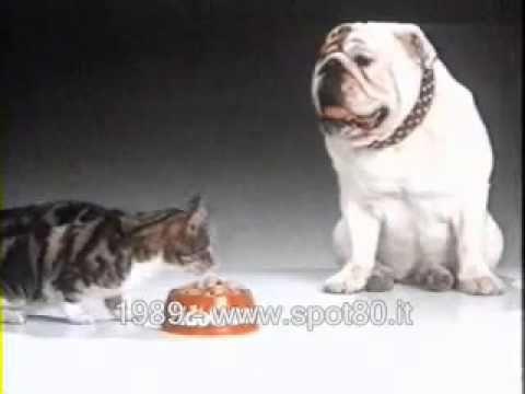 Storici Spot degli anni 80 Fido Gatto Cibo per gatti (1989)