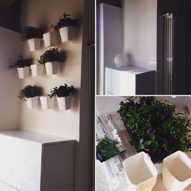 A green corner @ home  less than 30€. Is possible with @ikeaitalia 〰〰 Una parete verde in casa  con meno di 30€. È possibile con @ikeaitalia 〰〰 3 x Sunnersta Binario Binary 9 x Sunnersta Contenitore  Pot 9 x Piantine  Plants 〰〰 #consiglidicasa #sorprenditiognigiorno #ikeaitalia #ikea #green #plant #pot #aromatic #ikea2017 #home #instahome #scandinaviandesign #white #design #lowcost #bricolage #cool