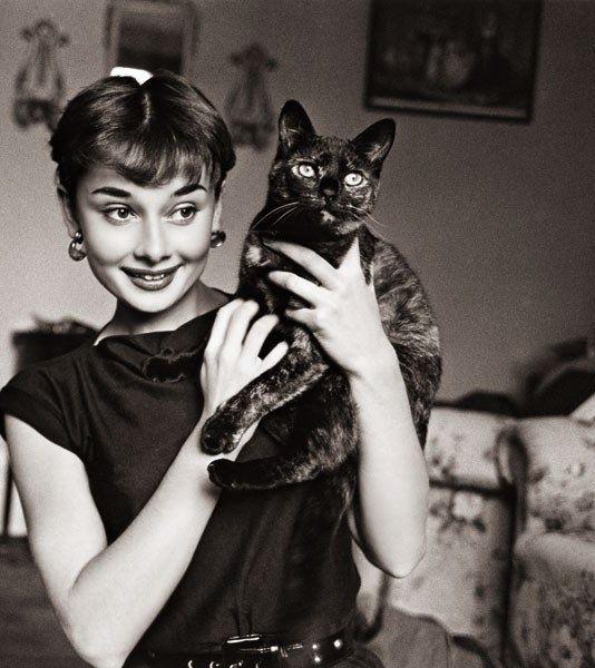 Lovely Audrey Hepburn holding cat.