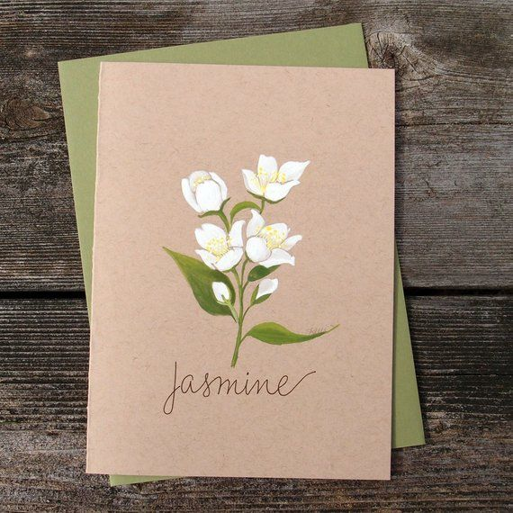 Jasmine Flower Original Watercolor Greeting Card Modern White