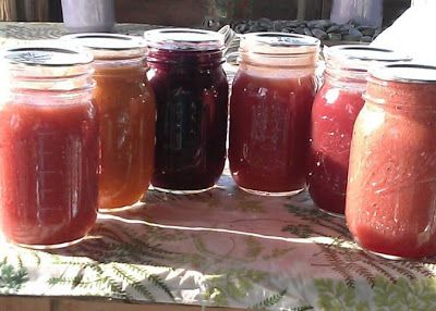 Canning Applesauce - Fancy flavors   (strawberry, blueberry, raspberry, plum, cherry, peach & apricot, cranberry, or rhubarb applesauce!!)