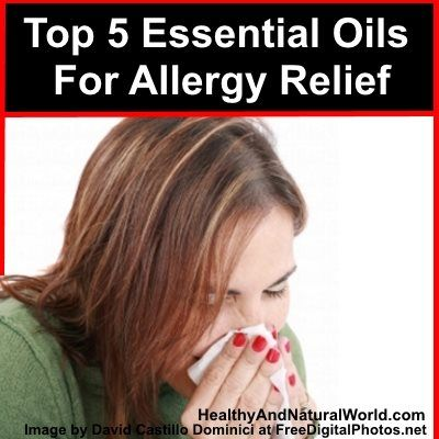 Top 5 Essential Oils For Allergy Relief