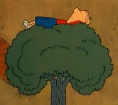 Kallen kiipeilypuussa lastenohjelmat piirretty
