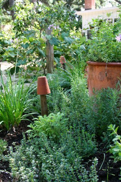 119 best Gemüsegarten   edible garden images on Pinterest Edible