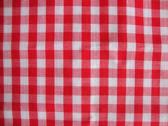 Vintage Red And White Gingham Fabric Checkered Picnic