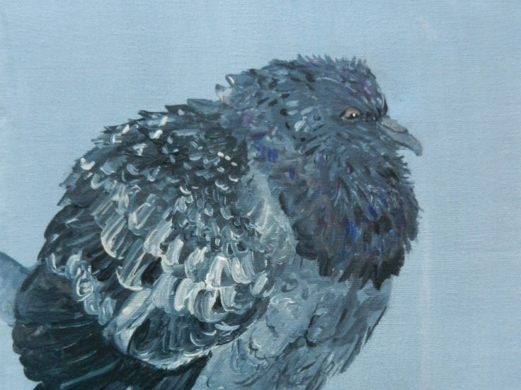 Pigeon on a Cold, Rainy Day, Original Acrylic Painting by FHarrisArtShop on Etsy