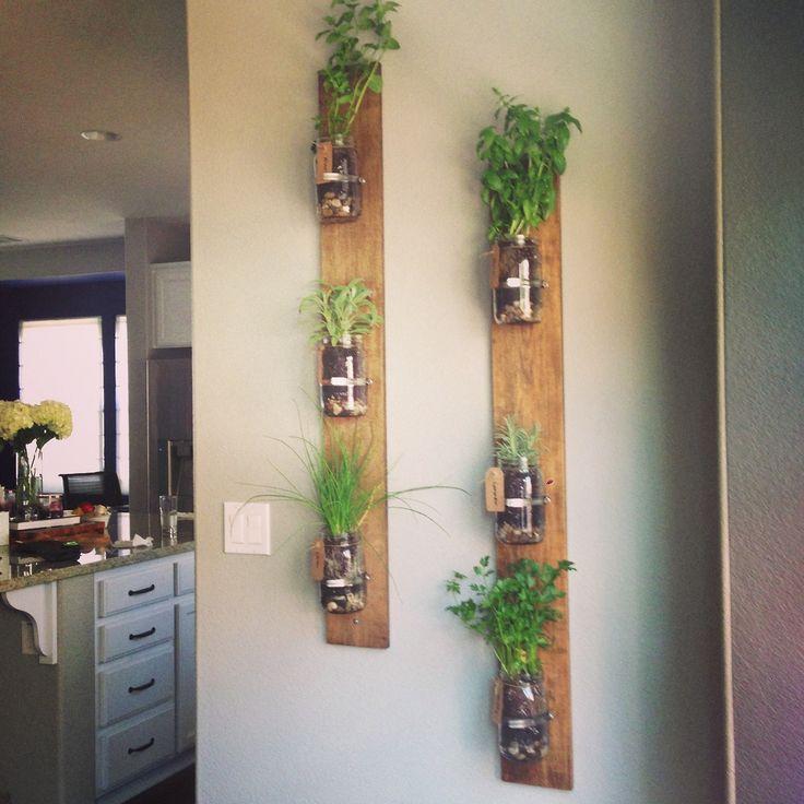 renter planting ideas