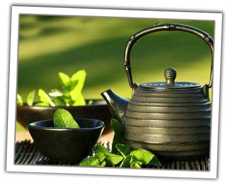 El consumo regular de té verde ayuda a prevenir las discapacidades funcionales que aparecen con la edad, según indica un estudio publicado en la revista American Journal of Clinical Nutrition. Los investigadores, de la Universidad de Tohoku (Japón), encontraron que los consumidores habituales de té verde son más ágiles e independientes con el paso del …