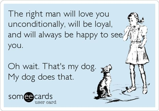 I love my dogs beyond words. And I have deep conversations with them every day thanking them for letting me be their person <3