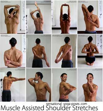 muscle assisted shoulder stretches: tricep stretch, one arm over the head, both arms over the head, cow face yoga position, grab an elbow be...