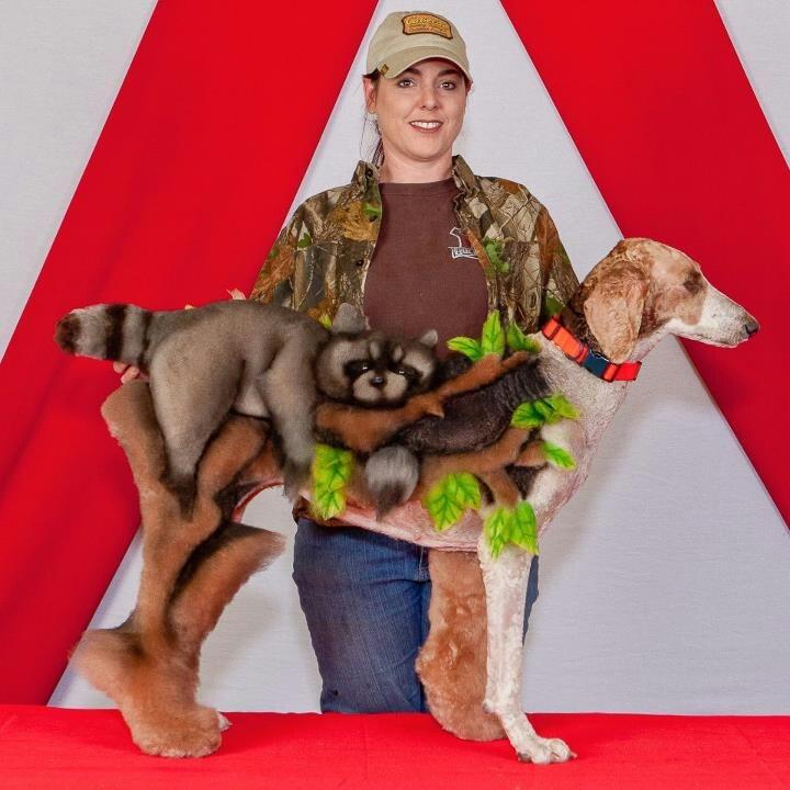 Angela Kumpe Dog Grooming Art