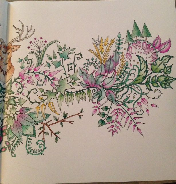 Details From The Deer Head Picture In Enchanted Forest Coloring Book Johanna Basford