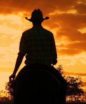 Australian stockman